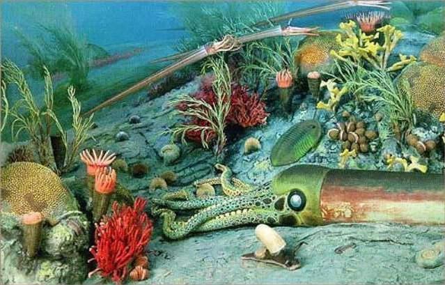 Фауна Ордовикского периода