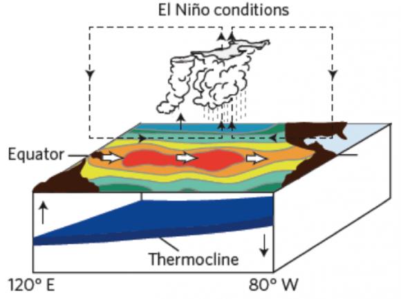 Условия возникновения Эль-Ниньо