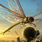 Древние стрекозы гиганты