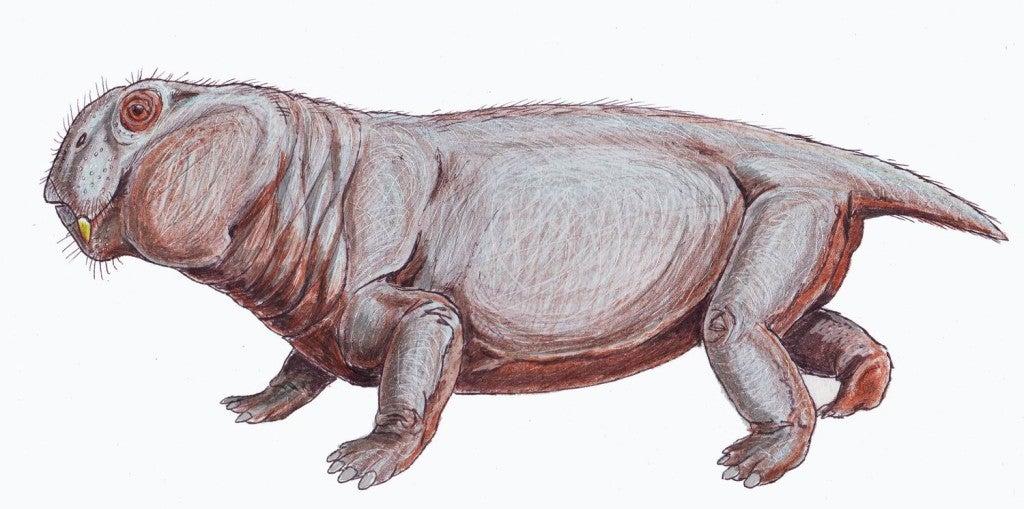 Листозавр