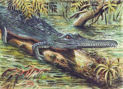 Фитозавр вымершее пресмыкающееся