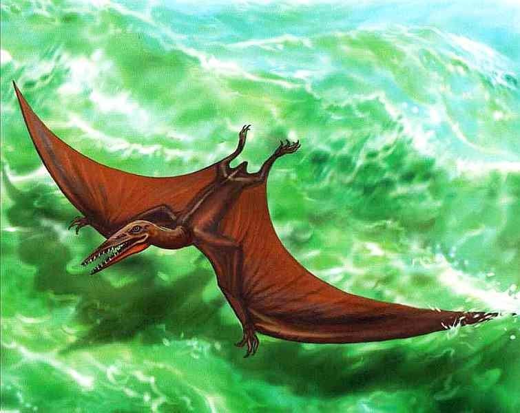 Птерозавры, летающие ящеры
