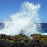 Мировой океан и циркуляция вод