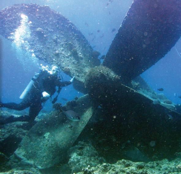 Самолетный винт на дне моря