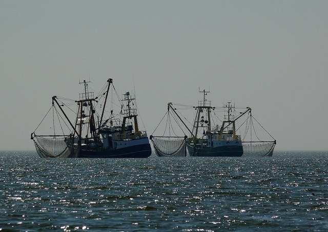 Флотилия рыболовных кораблей
