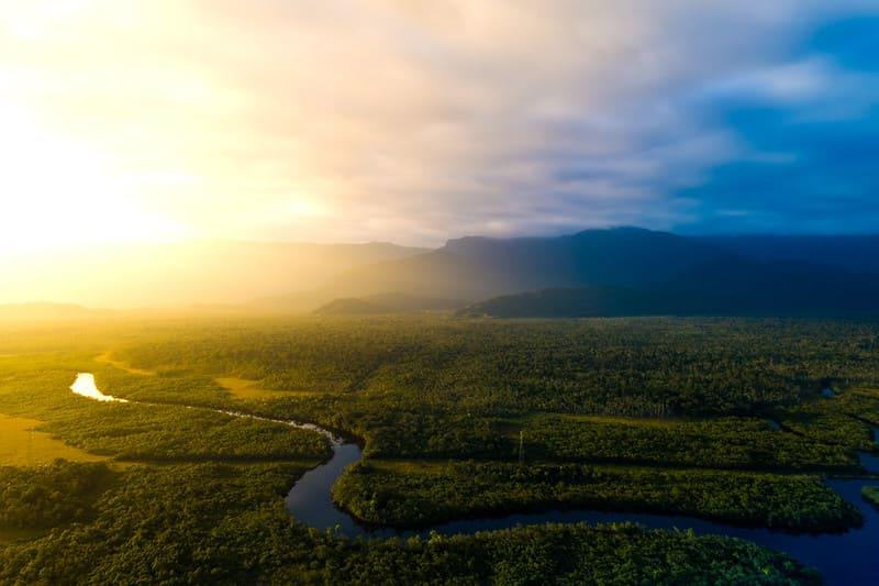 Амазонская сельва в Бразилии