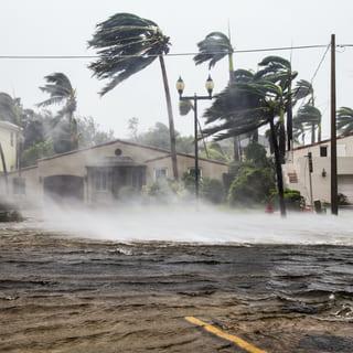 Тропический ураган