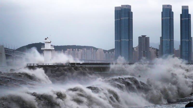 Тайфун, Южная Корея